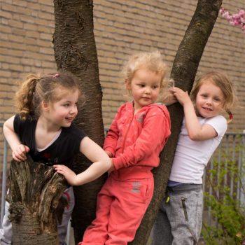Lekker buiten spelen bij de Tovertuin in Dongen